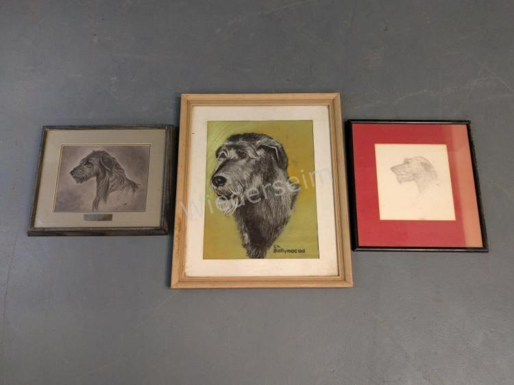 Three Irish Wolfhound Portraits