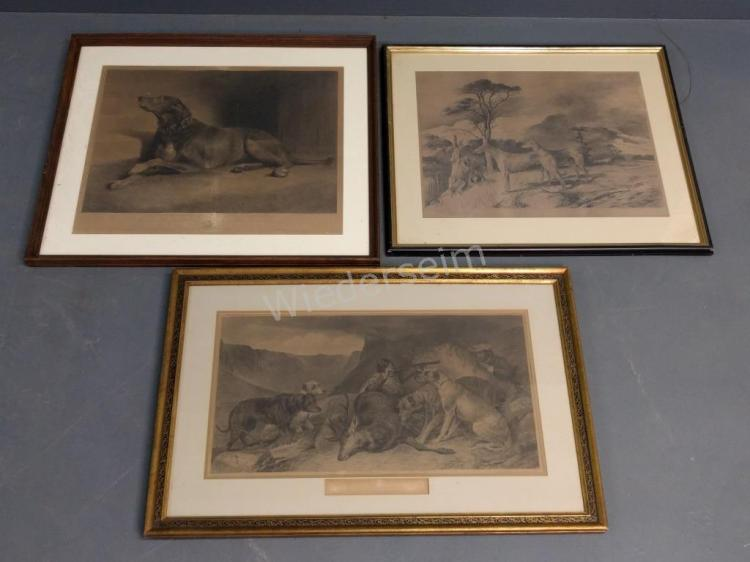 Three Irish Wolfhound Prints