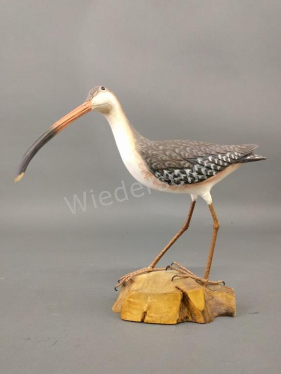 Carved Curlew