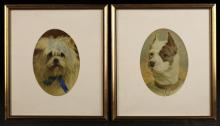 A Pair of Framed Watercolour Dog Portraits 7 ins x 5 ins (18 cm x 13 cms) in oval mounts and glazed gilt frames 12½ ins x 11 ins (32 cms x 28 cms).