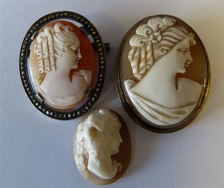 An Oval Cameo Brooch in silver mount, another cameo brooch and an