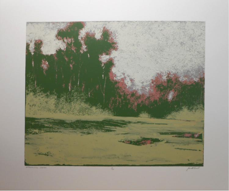 James McDonald: Contemporary Tonalist Serigraph
