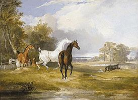 Francis Calcraft Turner (1795-1865) Horses in a