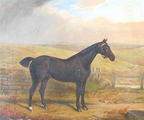 EDWARD LLOYD (19th century): 'Peter' a hunter in a