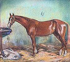 Alfons Purtscher (Austrian 1885-1962) A racehorse