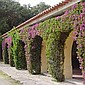 Quinta do Mar Estate, Colares, Sintra