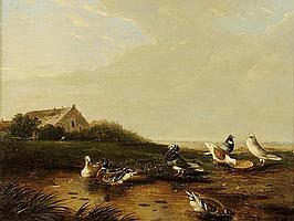 Franz van Severdonck (1809-1889), 'Eenden en