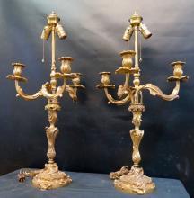 Vintage Pair of Louis XV Gilt Bronze Lamps