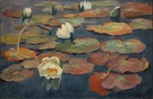 Hesterman 20e eeuw Waterlilies