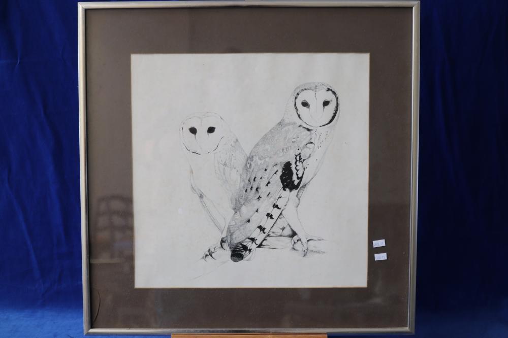 BARN OWLS BY CAROL NEWMAN 1975