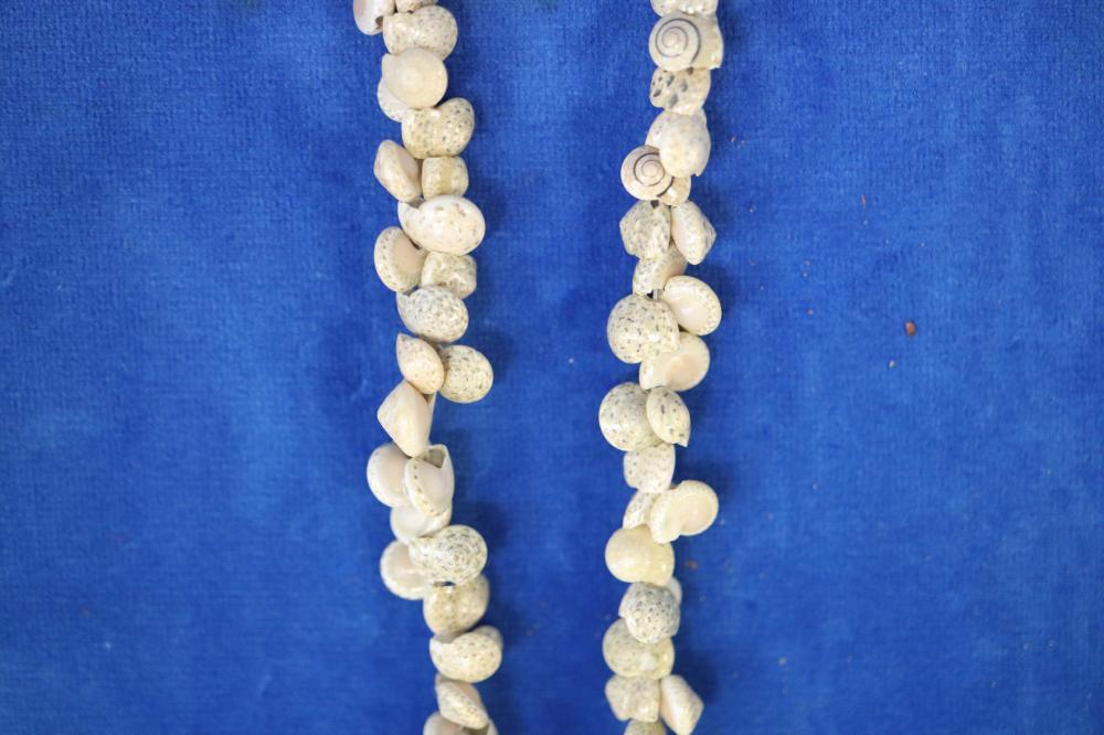 POLYNESIAN SHELL NECKLACE 100'S OF SHELLS