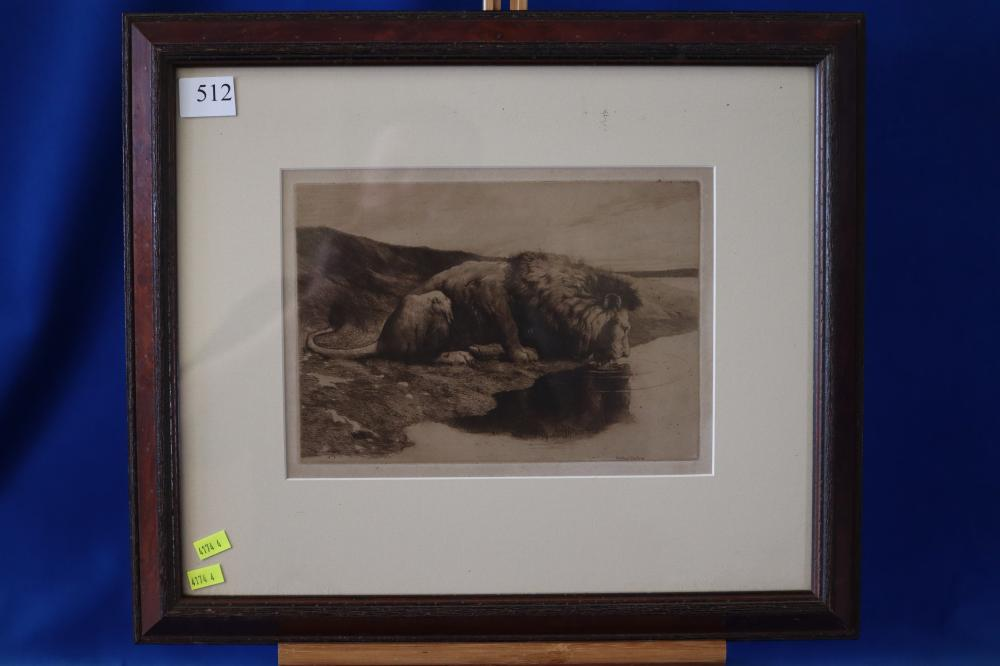 FRAMED LION DRINKING ETCHING BY HERBERT DICKSEE