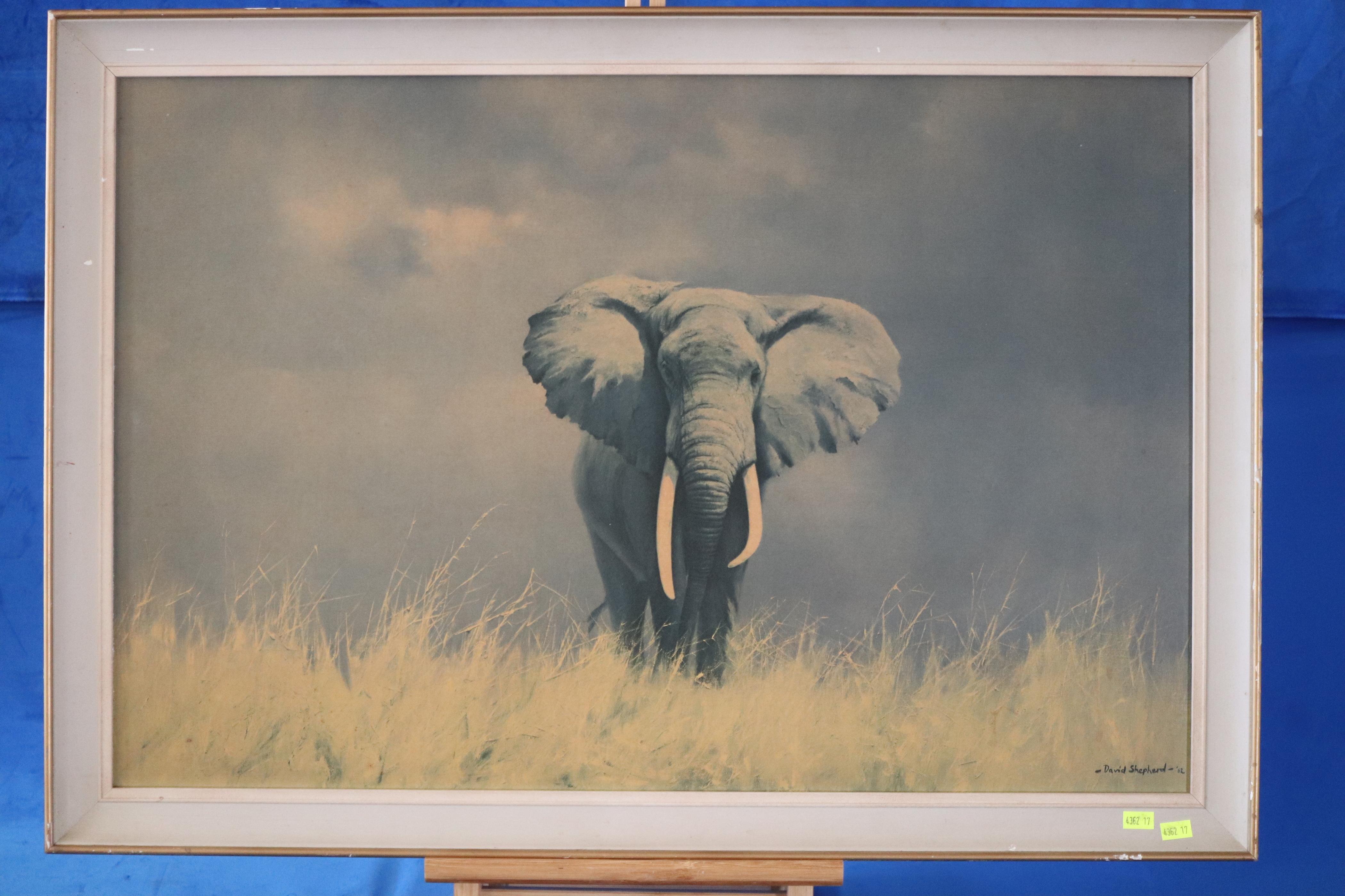 PRINT 'WISE OLD ELEPHANT' BY DAVID SHEPHERD