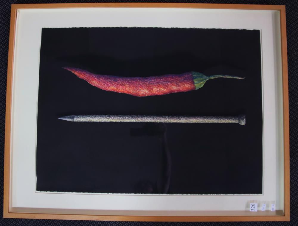 JOHN HONEYWILL ANTHEM I 1991 PASTEL ON PAPER 76 X 56.5