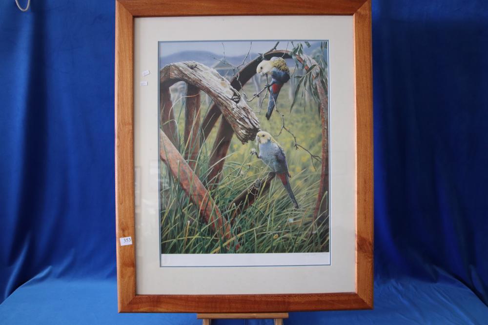 2 BIRD PICTURES