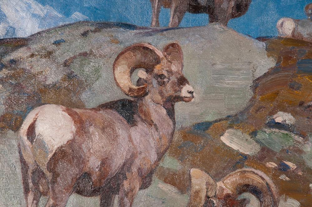 "CARL CLEMENS MORITZ RUNGIUS: ""ALARMED (BIG HORN ROCKY MOUNTAIN SHEEP)"""