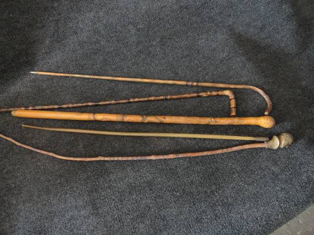 Lot of 5 Antique Canes President McKinley Campaign, Stingray, Barb, Stinger, Tail, or Quill with Brass Dragon, Bamboo Carved with Snakes, Metal Wrapped Snake