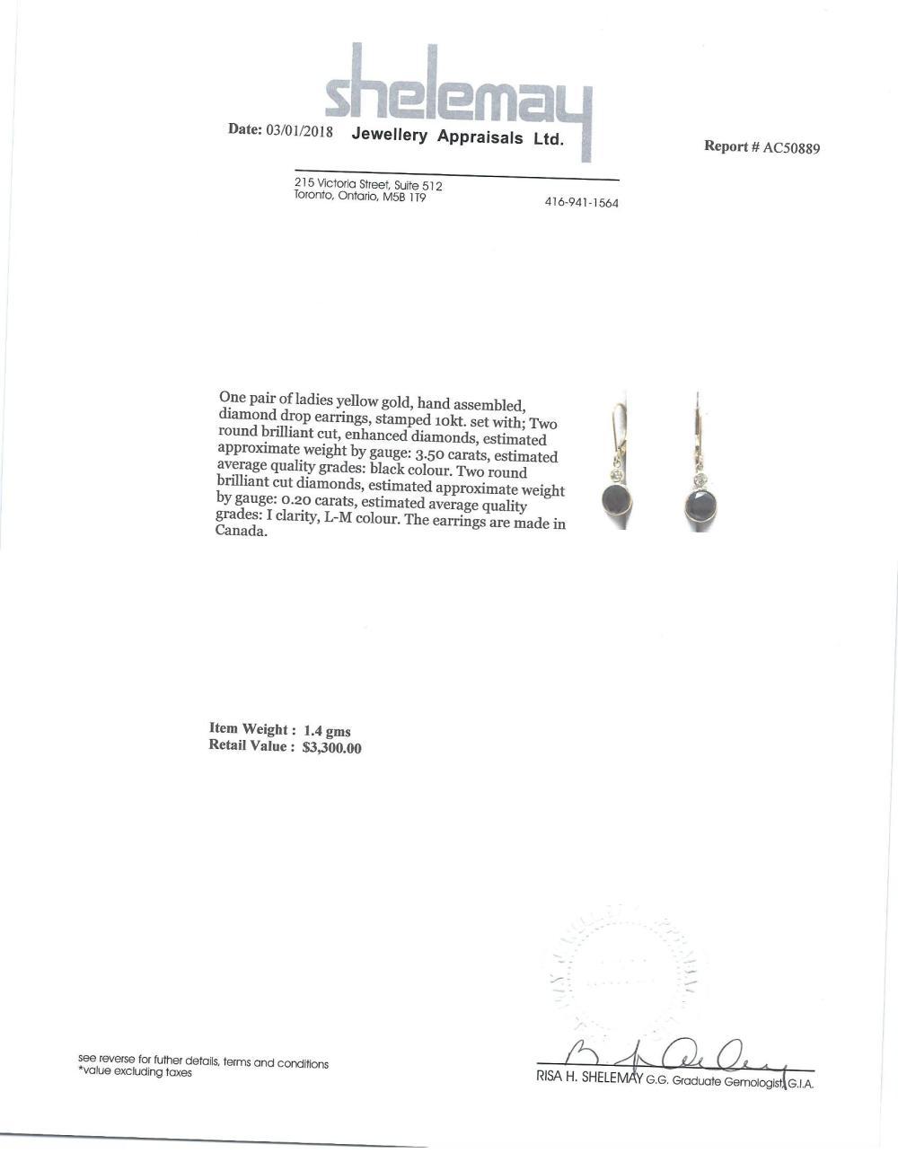 Certified 10K Black Diamond(3.5ct) Diamond(0.2ct) Earrings