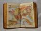 DUPAIGNE (Albert). Les Montagnes. Tours, Alfred Mame et fils, 1874. In-8, demi-chagrin rouge, dos orné, tranches dorées (Reliure de l'époque).