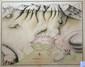 [ANONYME]. [Carte de Toulon et de ses environs]. [début XVIIIe siècle]. 351 x 445 mm.