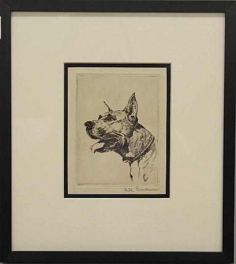 Framed Etching - Great Dane Dog by Rita Swann