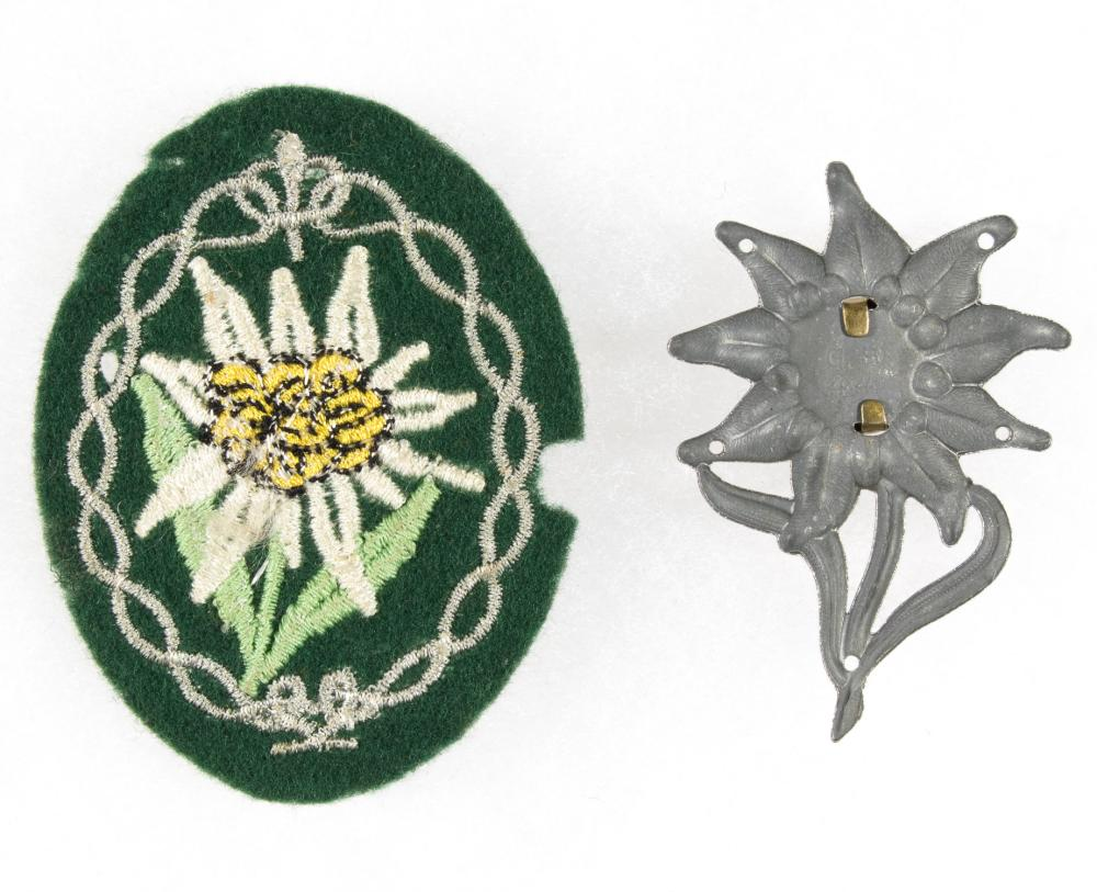 1ST GERMAN MOUNTAIN DIVISION INSIGNIA