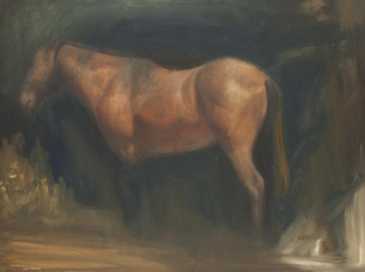 Luke Stavrowsky | Horse Dreams