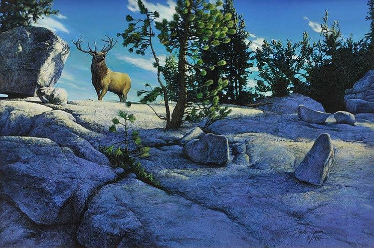 Elk on a Hillside