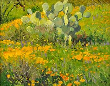 Poppies and Prickly Pear