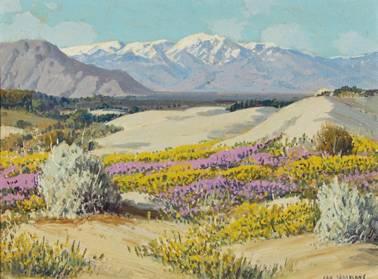 Carl Sammons | Wild Flowers, Palm Springs, Calif.