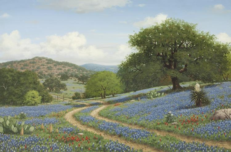 Royce Roberts | Texas Hill Country