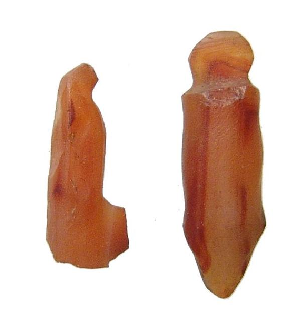A pair of ancient Egyptian carnelian amulets, Late Period