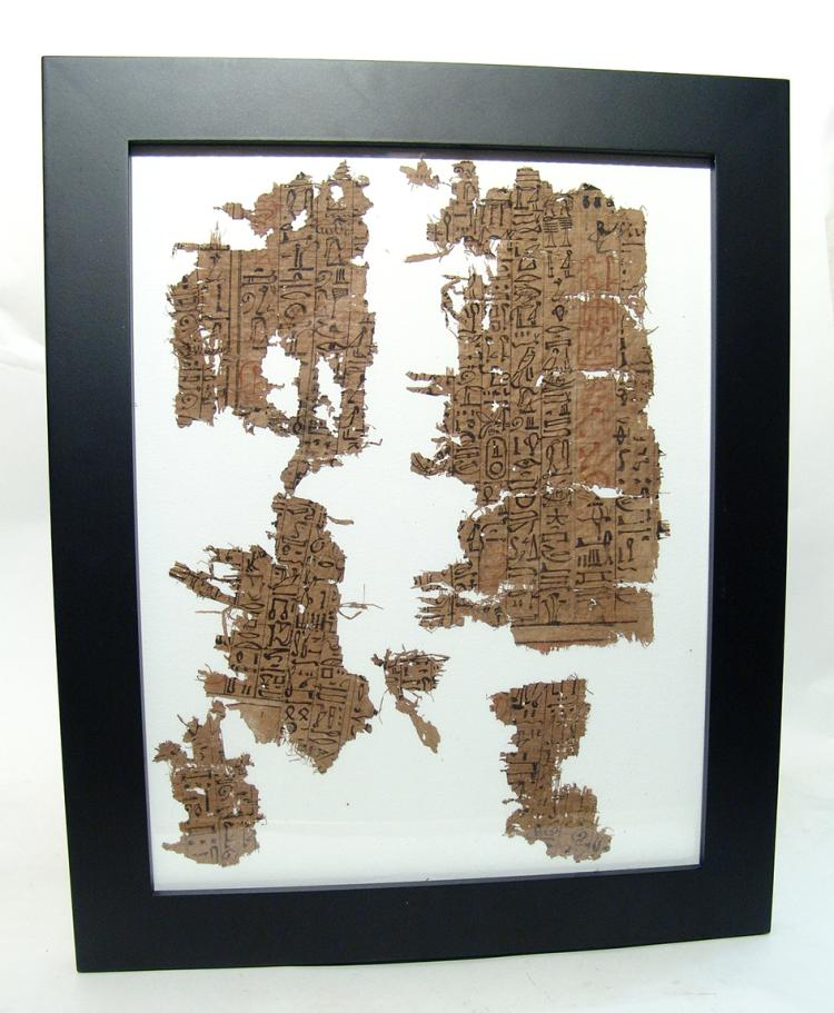 New Kingdom  fragments from Egyptian Book of the Dead