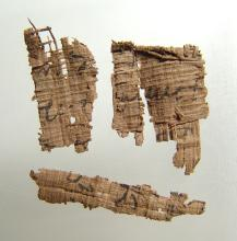 Group of 4 Egyptian papyrus fragments