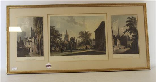 HAND COLORED COLLEGE TRIPTYCH INCLUDES
