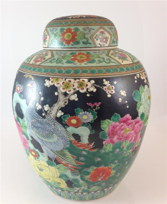 ASIAN GINGER JAR WITH PEACOCKS AND FLOWERS ON BLACK BACKGROUND, 12.5
