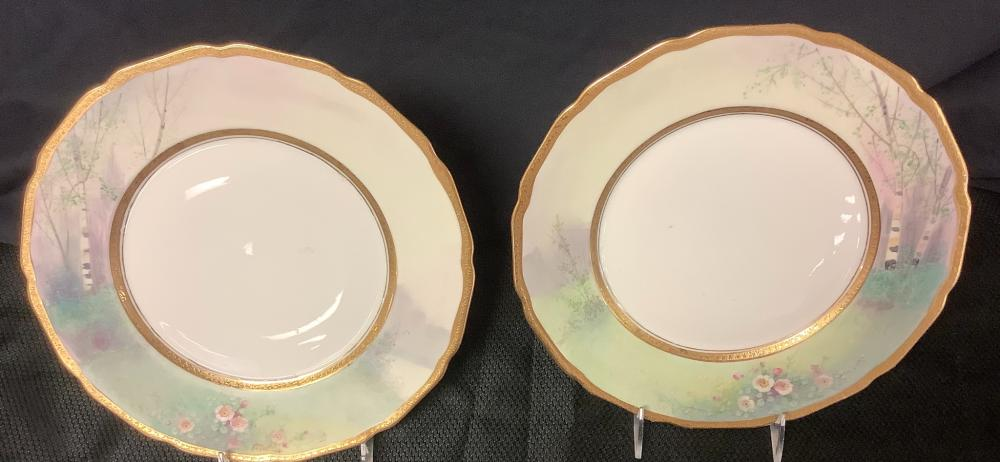 """2 Hand painted 11"""" Plates by W. Pickard. A. China. Gold rim around plates are in good condition, no chips."""
