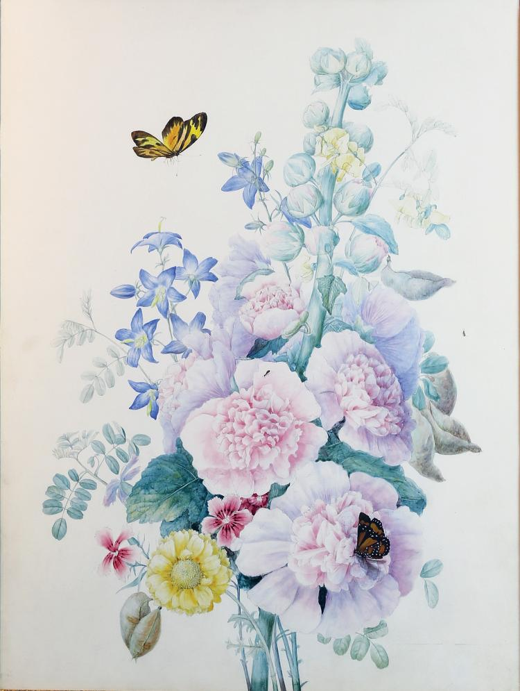 School of Redoute Botanical Drawings