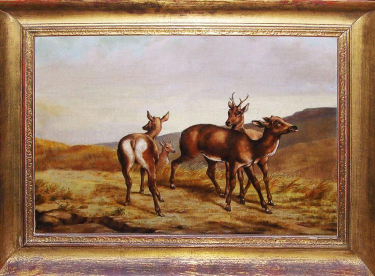 Untitled (Deer)