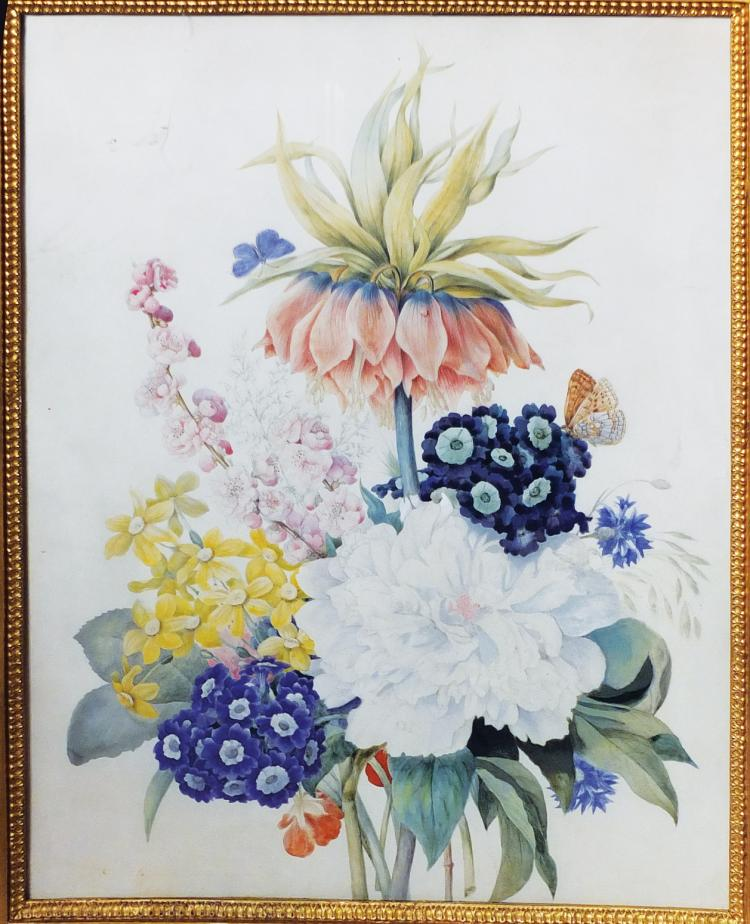 Botanical Watercolor by Student of Redoute