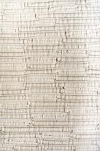 Sheila HICKS (Né en 1934) Badagara white - 1966 Tissage de coton naturel
