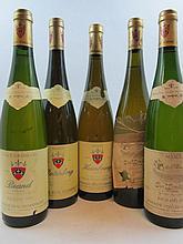 11 bouteilles 3 bts : ALSACE - TOKAY PINOT GRIS 1992 Clos Windsbuhl. Domaine Zind Umbrecht (étiquettes très déchirées et décollées, cap