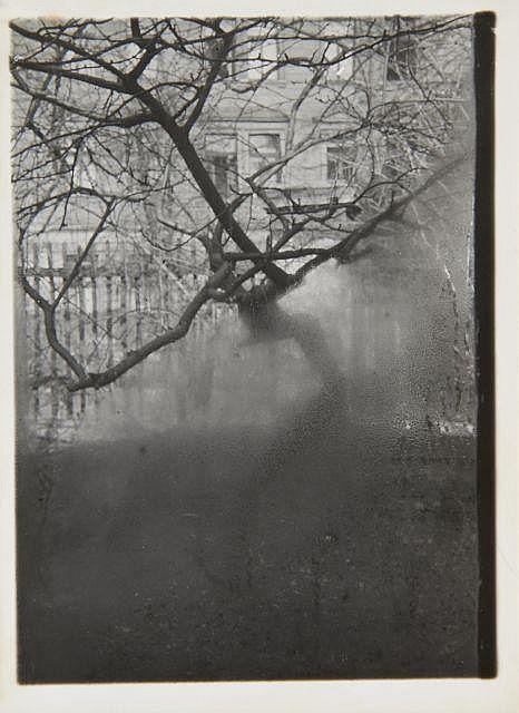 Josef SUDEK (1896-1976) Window of my studio I, Prague - 1950 Épreuve argentique d''époque