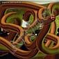 Gilles BARBIER né en 1965 à Vanatu, Mélanésie SANS TITRE, MAGIC HEAD IN THE KITCHEN, 2006 Epreuve chromogène