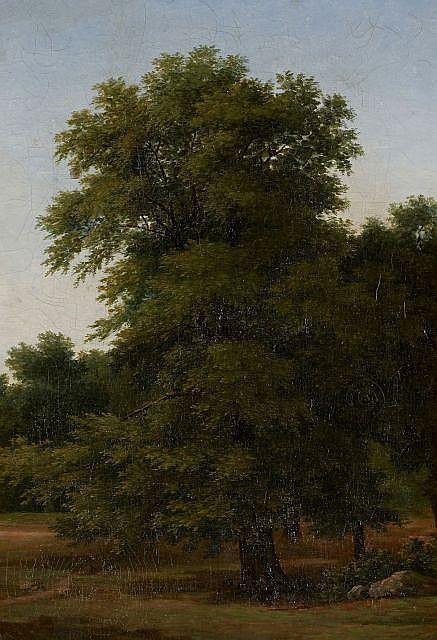 Attribué à Jean-Victor Bertin Paris, 1767 - 1842 Etude de châtaigner Huile sur toile (Toile d'origine),