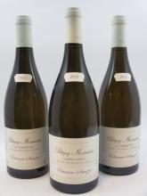 3 bouteilles 1 bt :  PULIGNY MONTRACHET 2011 1er cru Les Combettes. Etienne Sauzet