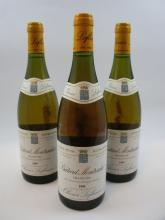6 bouteilles BATARD MONTRACHET 1995 Grand Cru
