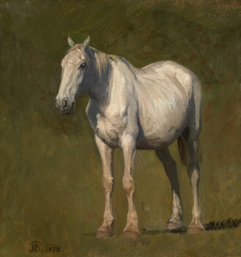Niels SKOVGAARD Copenhague, 1858 - Lyngby, 1938 Etude de cheval gris Huile sur toile (Toile d'origine)