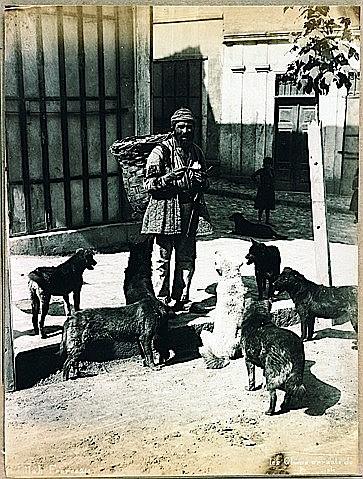 ABDULLAH FRERES (Actifs de 1860-1910) Chiens errants de la place de Cions Tirage albuminé monté sur carton