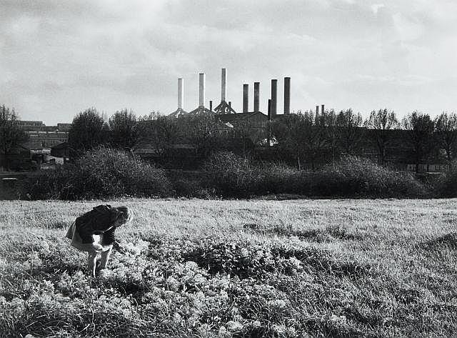 Willy RONIS (1910 - 2009) Île Saint Denis, 1954 Epreuve argentique (c. 1990)
